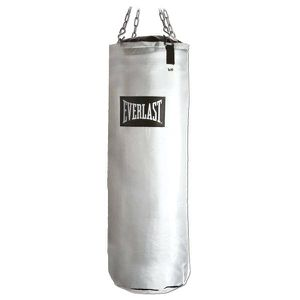 Everlast punching bag for Sale in Chicago, IL