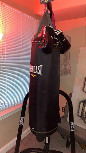 Everlast boxing set w/ gloves for Sale in Manassas, VA