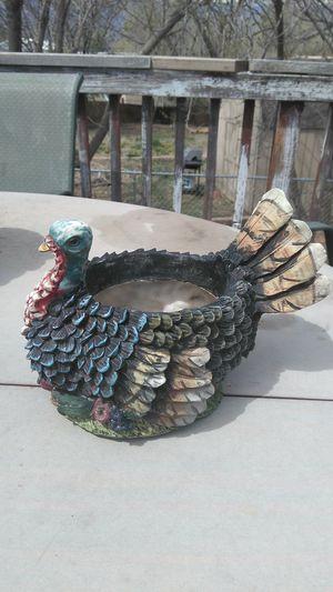 Roaster plant pot for Sale in Colorado Springs, CO