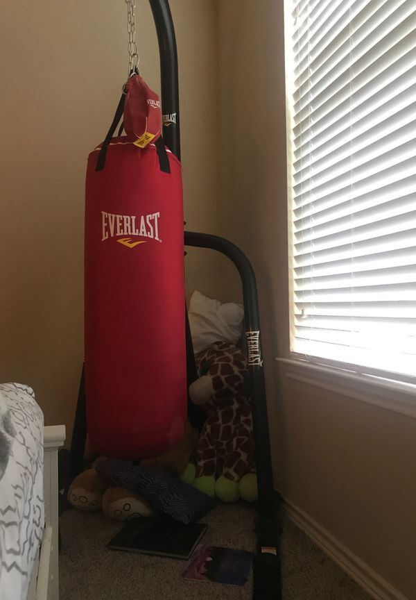 Everlast punching bag, speed bag , gloves and stand