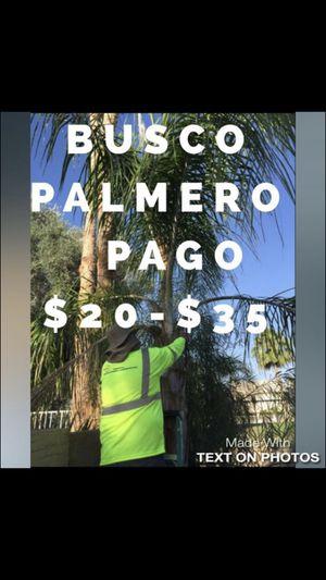 PALMERO for Sale in Phoenix, AZ