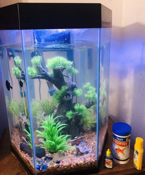 Beautiful Fish Tank for Sale in Wenatchee, WA