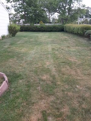 I cut Grass for Sale in Lakewood Township, NJ