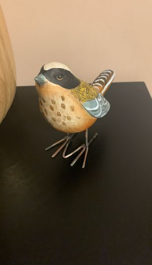 Bird for Sale in Chandler, AZ