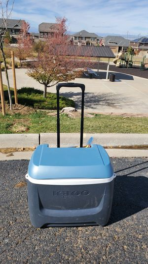Igloo Cooler - In great shape. for Sale in Aurora, CO