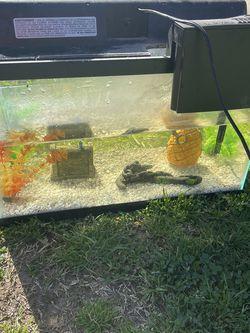 Fish Tank $60 for Sale in Fresno,  CA
