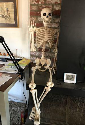 Skeleton for Sale in Lancaster, CA