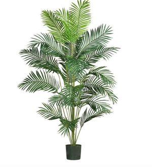 Faux house plants, corn stalk, palm, banana tree for Sale in Falls Church, VA