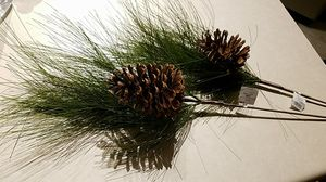 pine and pinecone for Sale in Greer, SC