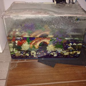 10 gallon small fish tank for Sale in Los Angeles, CA