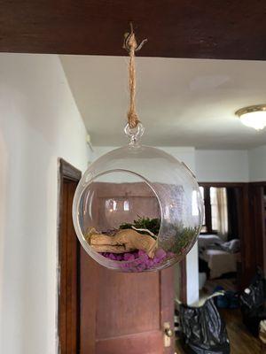 Hanging glass globe vase for Sale in Washington, DC
