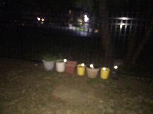 Gardening pots for Sale in Rockville, MD