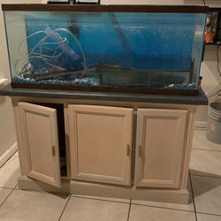 50 Gallon Fish Tank With Stand for Sale in Lakeland,  FL