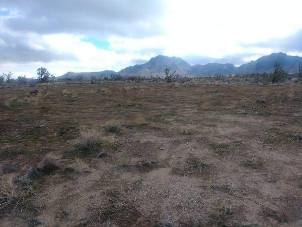 2 lots of land Dolan spring AZ