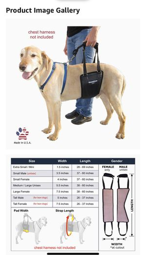 GingerLead Dog Support and Rehabilitation Harness for Sale in Chicago, IL