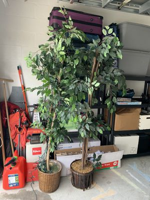 2 Fake Plants for Sale in Riverview, FL
