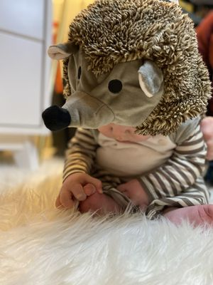 Infant Hedgehog Halloween Costume-Size 6-12 Months for Sale in Kenmore, WA