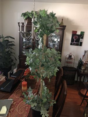 Topiary Fake Trees 2 for Sale in Houston, TX