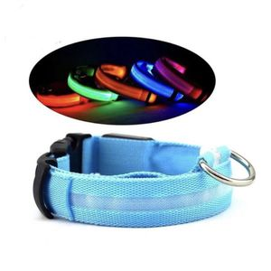 Dog Collar Light Up for Sale in Bothell, WA