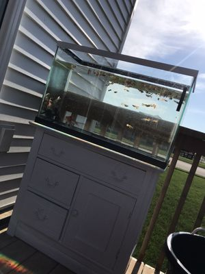 30 gallon fish tank and stand for Sale in Byron Center, MI