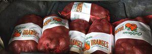 Avocados for sale for Sale in San Bernardino, CA
