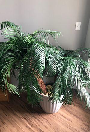 Fake plant for Sale in Draper, UT