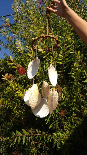 Sea shell wind chime for Sale in Norwalk, CA