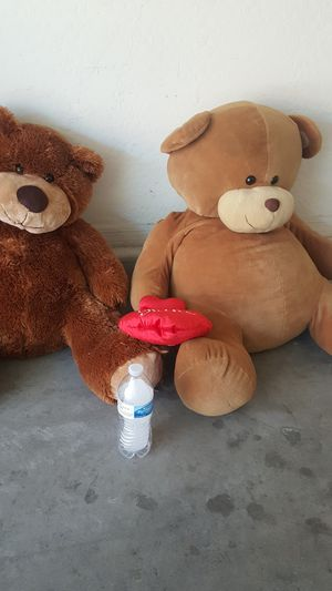 Teddy bears. for Sale in Tolleson, AZ