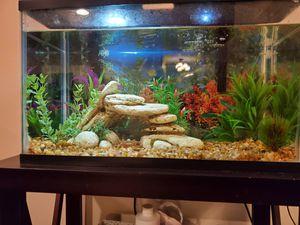 Fish Tank 10 gallon for Sale in Braintree, MA