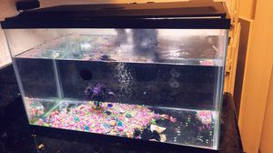 Medium Sized Fish Tank for Sale in Sacramento, CA