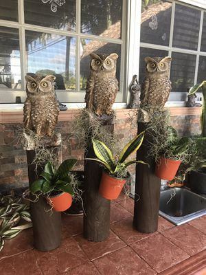 ADORNOS DE LECHUZA 🦉 for Sale in Hialeah, FL
