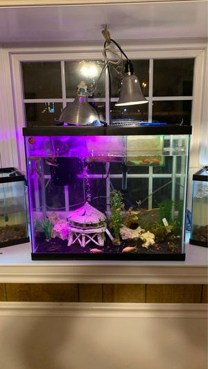 Fish tank for sale$$ for Sale in Irving, TX