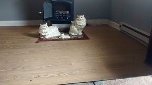 Antique porcelain Persian cat's for Sale in Terre Haute, IN