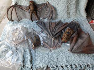 Halloween Bats, set 3 for Sale in Ruskin, FL
