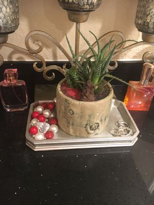 Small centerpiece with Aloe and Zebra plant for Sale in Bloomington, CA