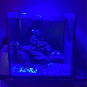 60 Gal Cube With Cherry Stand for Sale in Tuckerton, NJ