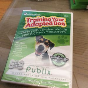 Training Your Adopted Dog for Sale in Hialeah, FL