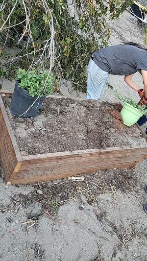 Free garden bed and compost. Must take all for Sale in Fontana, CA