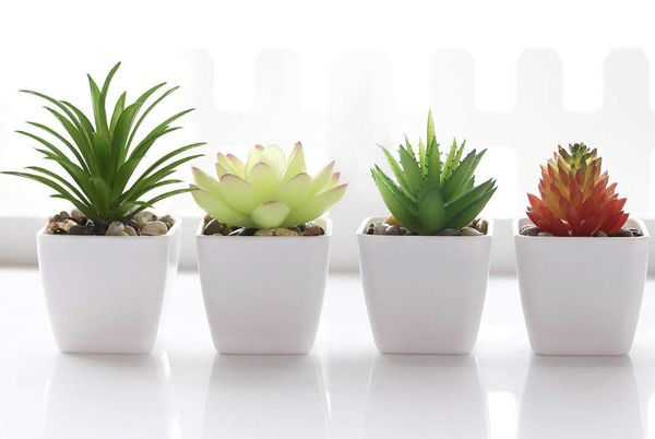 Fake plants for decoration