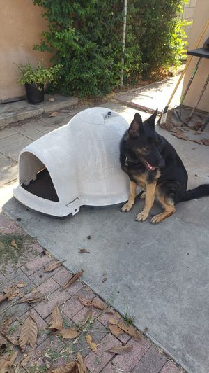 Large dog house for Sale in San Diego, CA