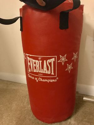 Everlast USA Punching bag for Sale in Baltimore, MD
