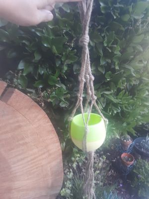 2 hanging pots for 8 the pair for Sale in Reedley, CA