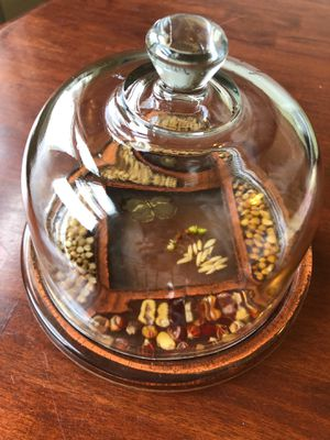 Vintage Bell Jar covered plate for Sale in Warren Air Force Base, WY