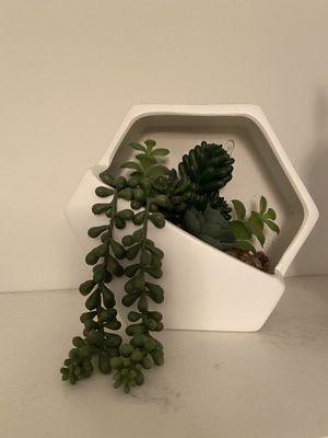 Decorative fake plant for Sale in Norwalk, CA