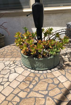 Patio table planter with succulents for Sale in Fremont, CA