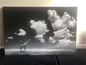 Nature Canvas photo print-Decor for Sale in Atlanta, GA