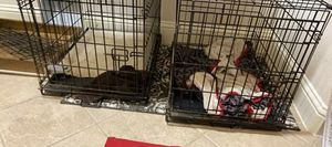 Dog Crates (4 total) for Sale in Fairview, TX
