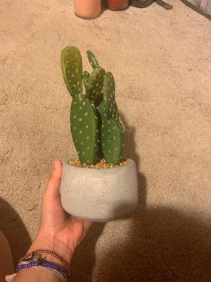 Cactus decor ( fake not real ) for Sale in Escondido, CA