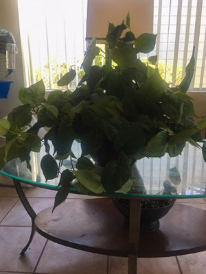 Fake hanging plant 8 dollars for Sale in Imperial Beach, CA