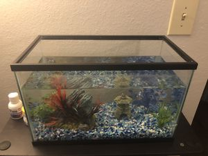 Small Fish Tank for Sale in Hurst, TX